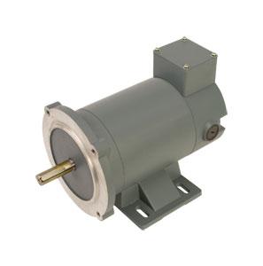 Omegas Magnet DC Industrial Motors - Order Online | OMPM-DC Series NEMA 56C Frame DC Motors